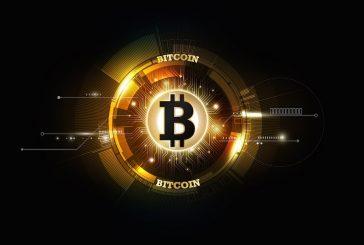 Giới kinh doanh đầu tư vào đồng bitcoin ngày càng tăng