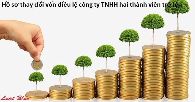 Hồ sơ thay đổi vốn điều lệ công ty TNHH hai thành viên trở lên (nguồn internet)